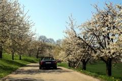 Spontane Frühjahrsausfahrt | 19.04.2019 (Karfreitag)